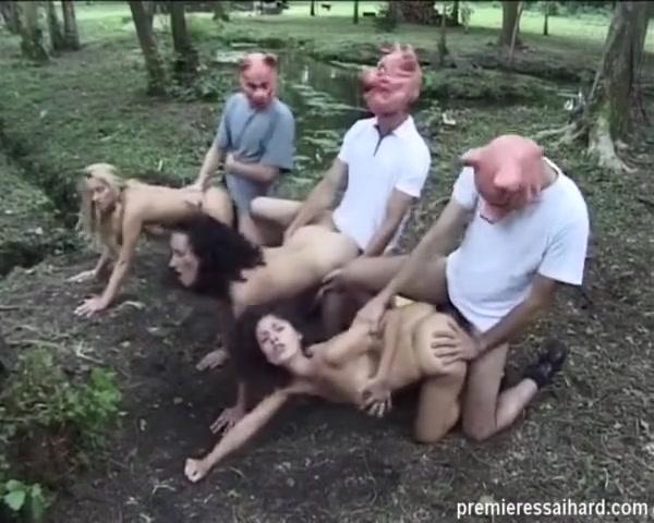 Порно с сосвиньеми